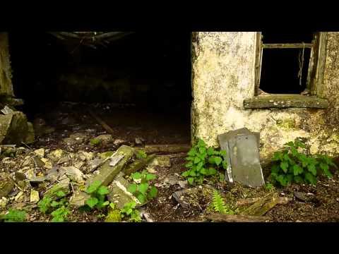 Very Old Irish Farm, Co Tipperary. Famine House?