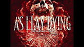 as i lay dying visual essay marsh  44 15