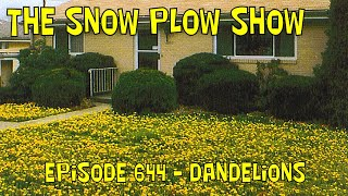 The Snow Plow Show Episode 644 - Dandelions