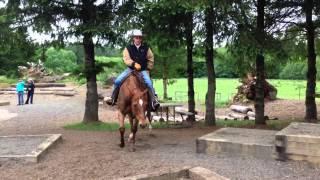 mark bolender demonstrates a trail course challenge pattern 52415