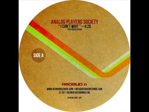 Analog Players Society - I Can't Wait (feat. Cecilia Stalin)