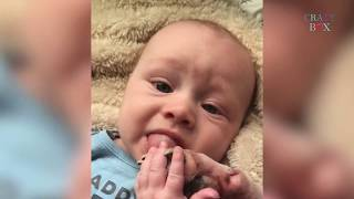What Happen On This Baby  | Funny Babies and Pets Compilation