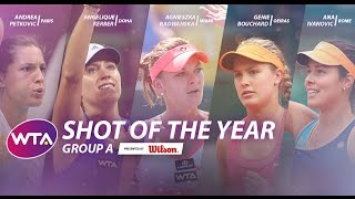 2014 wta shot of the year   group a
