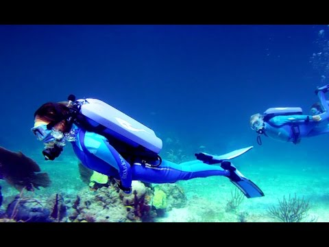 Wonders Of The Sea 3D first clip - Jean-Michel Cousteau doc narrated by Arnold Schwarzenegger