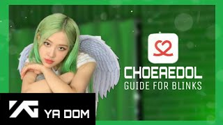 (UN)HELPFUL GUIDE ON CHOEAEDOL FOR BLINKS☆