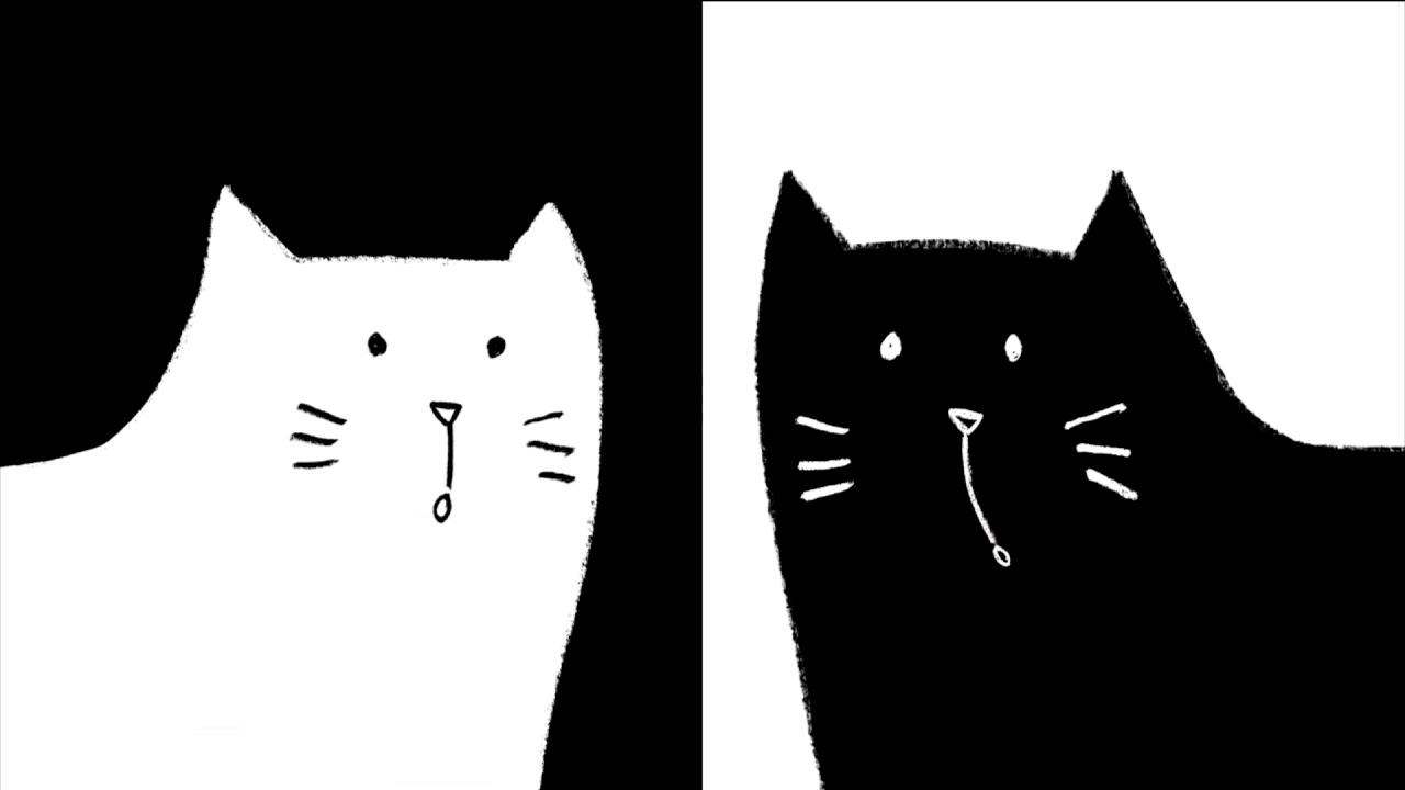Booktrailer Gato Preto Gata Branca
