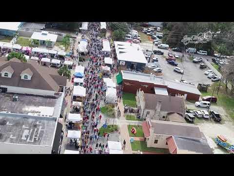 Florida Manatee Festival