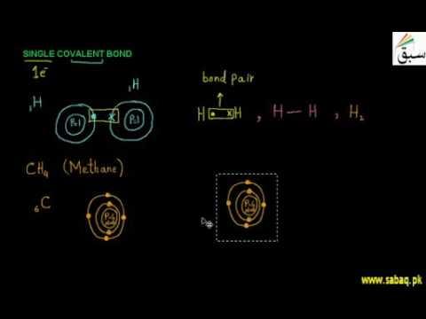 Single Covalent Bond