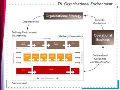 Chapter 14 Transport: TFL Organisation Environment