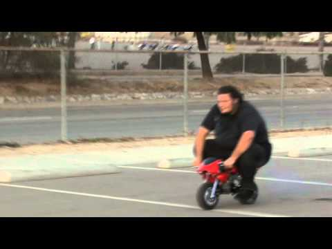 Cagllari Pocket Bike weight capacity - 47cc pocketbike