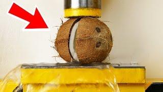 """Coconut VS Hydraulic Press - """" The Smasher Show """""""