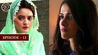 Hassad Episode 13 |  Minal Khan | Top Pakistani Drama