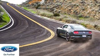 THIS Is The Most Expensive Non-Shelby Mustang Built By Ford! Introducing The...