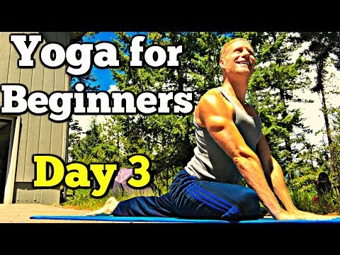 day-3---full-body-yoga-(7-day-beginner-yoga-challenge)-sean-vigue-fitness