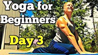 Day 3 - Full Body Yoga Stretch - 7 Day Beginner Yoga Challenge #7dayyogachallenge