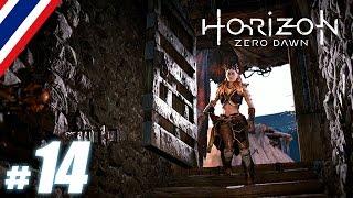 BRF - Horizon Zero Dawn # 14
