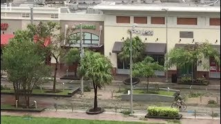 Video shows looters at the Shops at Midtown Miami