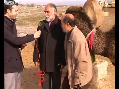 Camel interrupts Interview