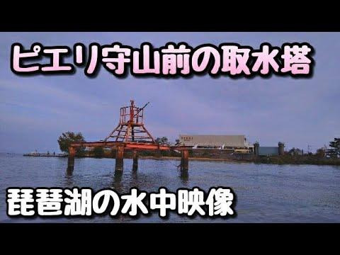 #琵琶湖 #水中映像  ピエリ裏 取水塔 水中映像