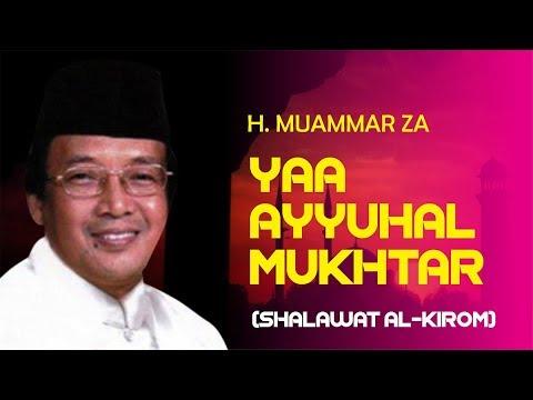 MUAMMAR ZA - YA AYYUHAL MUKHTAR (SHOLAWAT AL-KIROM) [AUDIO CLEAN + TEXT]