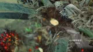 PT Pasifik Agro Sentosa Company Profile Video [Official] (Mandarin Version)