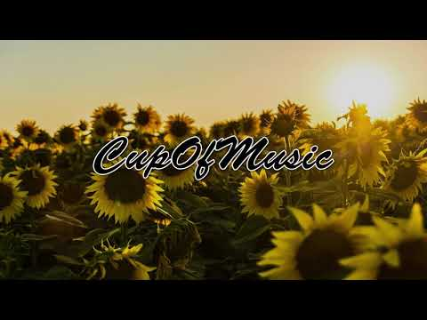 Post Malone, Swae Lee -  Sunflower (dj goku xx Remix)