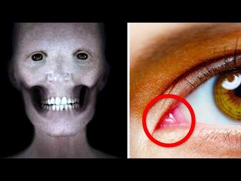 17 Jaw-Dropping Facts You Didnt Know About the Human Body