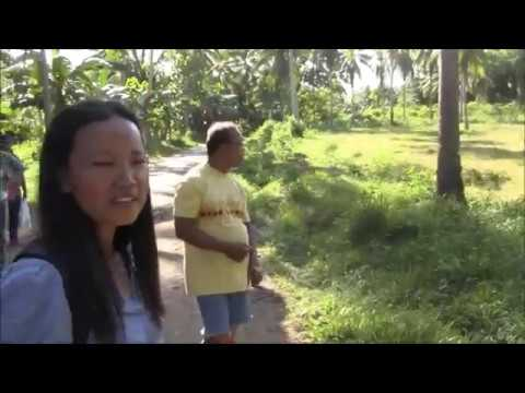 PERFECT LOCATION FOR A DREAM HOUSE FOR NEWLY MARRIED COUPLE LOT FOR SALE EXPAT PHILIPPINES