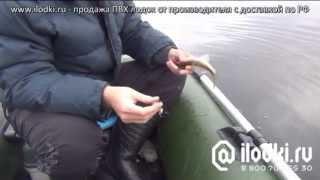 Как рыбачить на лодке Фрегат М3 с электромотором от ilodki.ru