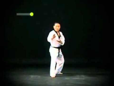 Taekwondo Poomsae Pyongwon ( 4th DAN )