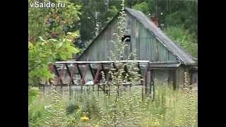 Заброшенный коллективный сад № 2 в Верхней Салде