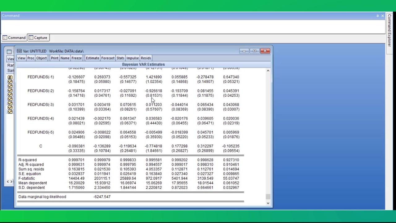 EViews: Statistical forecasting software