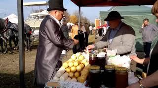 Miasto Węgrów ,V Jubileuszowy Hubertus w Węgrowie  201 3,, Nasz Kraj,,