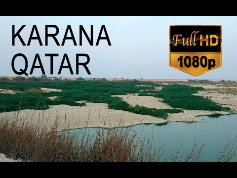 KARANA QATAR | BIRDS PARADISE IN QATAR | DOHA ATTRACTIONS| VISIT QATAR