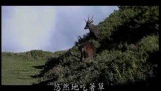 逐鹿蹤源- 影片導演 劉思沂 / OBOE演出 謝宛臻 / 曲 吳金黛