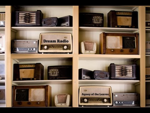 Dream Radio by Agony of the Leaves (Stephen Richardson)