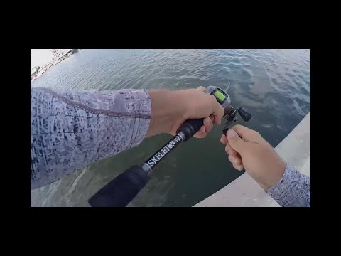Slaying Trout In URBAN Corpus Christi Canals