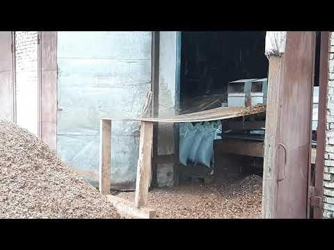 Обработка шишки в кадровый орех Таштагол,  Шишка