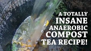 Totally Insane Compost Tea Recipe! (Blame it on Korea) (Day 2 of 30)