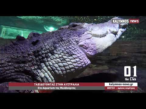 Στο Aquarium της Μελβούρνης