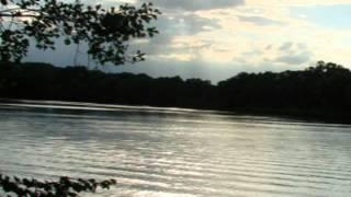 видео николай рубцов стихи о родине