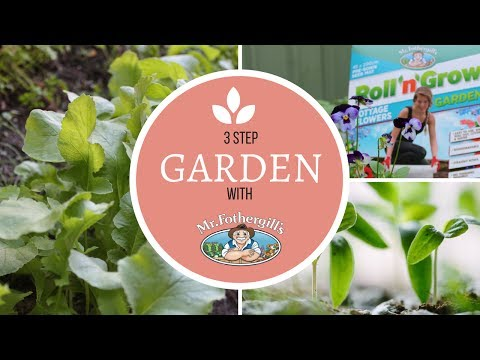 The Easiest Way to a Picture Perfect Garden by Mr Fothergills | HER KITCHEN GARDEN