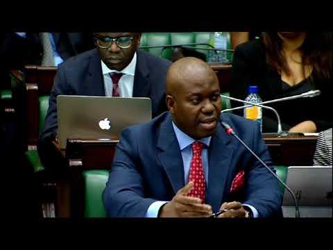 Portfolio Committee's inquiry into Eskom
