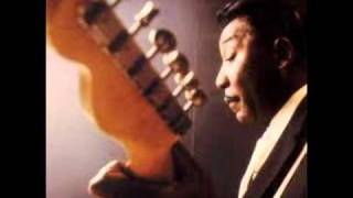 Muddy Waters & Otis Spann -- I Live the Life I Love