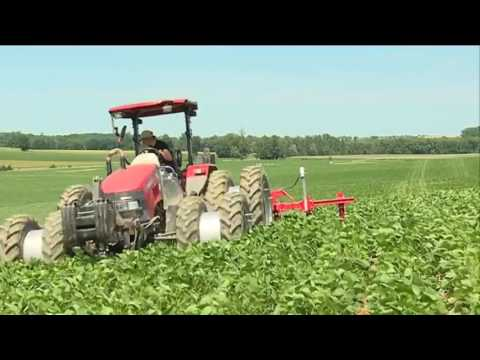 Gers inquiétude et colère des agriculteurs biologiques