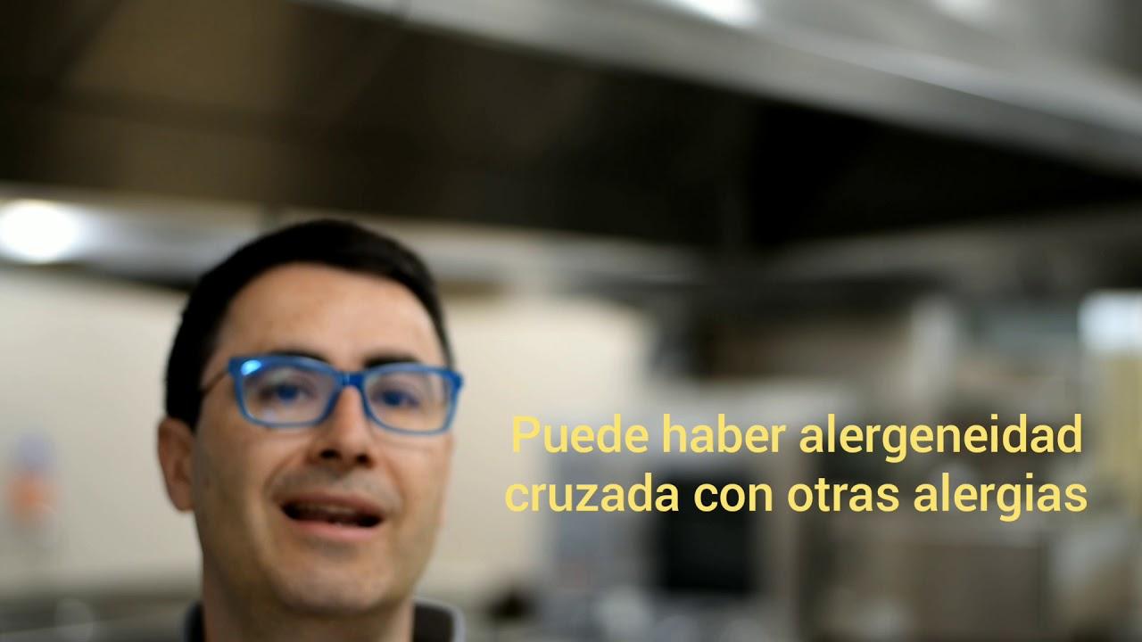 La entomofagia y el uso de los insectos en la cocina