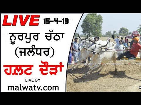 🔴 NURPUR CHATHA (Jalandhar) HALT RACES - 2019 || LIVE STREAMED VIDEO