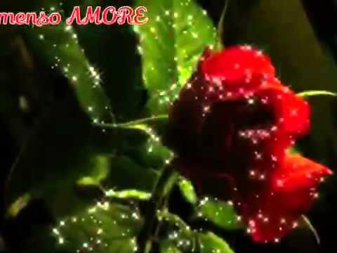Amato Immenso AMORE .Buon pomeriggio - YouTube VF25