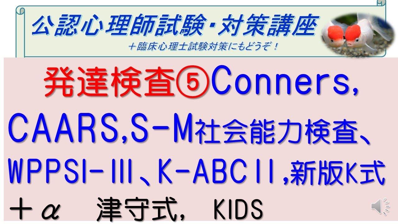 K 2020 検査 式 新版 発達