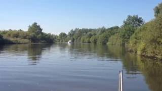 River Yare from region of Brundall towards Ferry House. An August morning 10.15